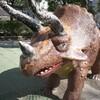 東京都内 おすすめ恐竜のいる公園に子連れでお出かけ【江戸川区西葛西 総合レクリエーション公園】