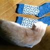 セキユリヲ「編み込み模様の靴下」をほどいた毛糸で編む