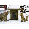 【岩手・紫波町で初詣】志波稲荷神社と志波古稲荷神社:白狐のミイラと杉林