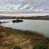 西川池(滋賀県竜王)