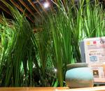 鳥良西新宿で新年会!鳥料理が美味しくお酒が豊富なおすす居酒屋!