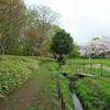 川口市 安行原自然の森と密蔵院、九重神社 湧水と季節の自然