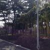 藤沢市「憩いの森」制度拡大の必要性