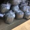 ブルーベリーの養液栽培が始まりますの巻