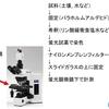 生ゴミ処理の微生物を顕微鏡で視る