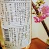 海鼠(小田原産)、河津桜と