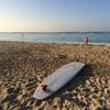 ハワイ通の向山雄治さんから聞いた✨『冬のハワイ★おすすめアクティビティBEST3』