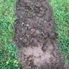 土が乾かず、畑づくりに取り掛かれない。イライラご機嫌斜めです(苦笑)