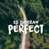 【和訳/歌詞】Perfect/Ed Sheeran(エドシーラン)