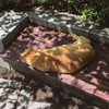 松山庭園美術館にて地域猫のお話