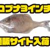 【Signal】ラインスルータイプの小型スイムベイト「コブナ3インチ」通販サイト入荷!