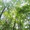 三方分山〜パノラマ台の旅