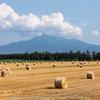 斜里岳と麦わらロールと湧き水