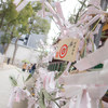 【写真】スナップショット(2019/1/5)生田神社