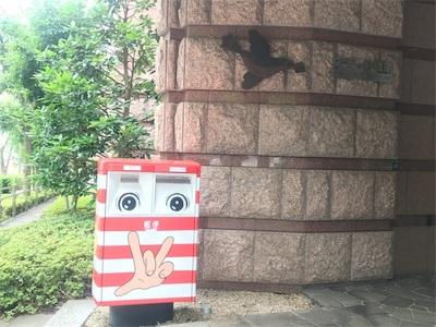 山手線一周走ろう④~目白駅から新宿駅まで~
