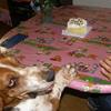 過去pic(その14)誕生日