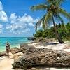 「世界さま〜リゾート」で放送された欧米人に大人気の国「ドミニカ共和国」