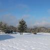 もう雪はいいよ(^。^;)