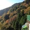 早朝ランと11月中旬の大山(神奈川)の混雑具合