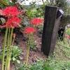 秋バージョン寄せ植え、夏野菜仕舞い