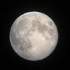 昨日は令和元年最初の満月でした
