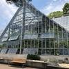 【探訪】東京都薬用植物園の終春見物