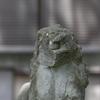 ひがし茶屋街の菅原神社には顔が削れた歴戦の猛者のような狛犬がいる