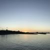 2019石垣島旅行3日目:西表島~由布島~小浜島の3島めぐりツアー