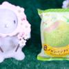 【アンディコ 赤肉メロンパンアイス】ファミリーマート 3月31日(火)新発売、ファミマ コンビニスイーツ 食べてみた!【感想】