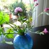雑草はたくましく咲く~どうなる日経平均~