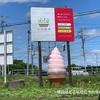 【千歳】夏はひまわり迷路も楽しめる『小川農場』でいちご狩り&絶品いちごソフト