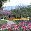 遊具に水遊びに四季の花。国営アルプスあづみの公園(堀金・穂高地区)
