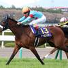 【桜花賞・阪神牝馬S2018】レース回顧・結果報告