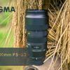 【SIGMA 100-400mm F5-6.3 DG OS HSM】 レンズは資産編