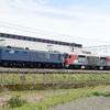 第825列車 「 甲15 JR貨物DF200-205の甲種輸送を狙う 」