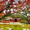 【紅葉】そうだ京都へ