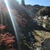 紅葉を観に行こうよう(飯盛山城・足助城)