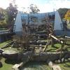 円山動物園Ⅱ ― 猿山連合軍 ―
