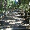 愛宕山ハイキング2