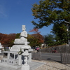 興正寺の紅葉