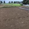 思いもよらず未明に雨が降ってくれたが、マルチが6畝しか作れなかった8月27日午前6時50分