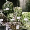 3月25〜28日のカリネコカレーは野菜がいっぱい‼️