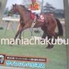 サラブレッドカード95 031 第30回サンケイスポーツ賞4歳牝馬特別 サイレントハピネス