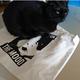 今日の黒猫モモ&白黒猫ナナの動画ー762