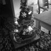 ささやかな我が家のクリスマス事情