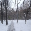 モスクワの雪事情