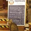 Cats ベルギーで出会った猫-2-