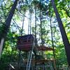 森の住人のツリーハウス