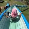 【育児】東三河南部で子どもと遊ぶのに楽しい公園5選
