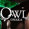 ひよこの関西クラブ解説:OWL osakaーアウルオオサカー(大阪梅田)